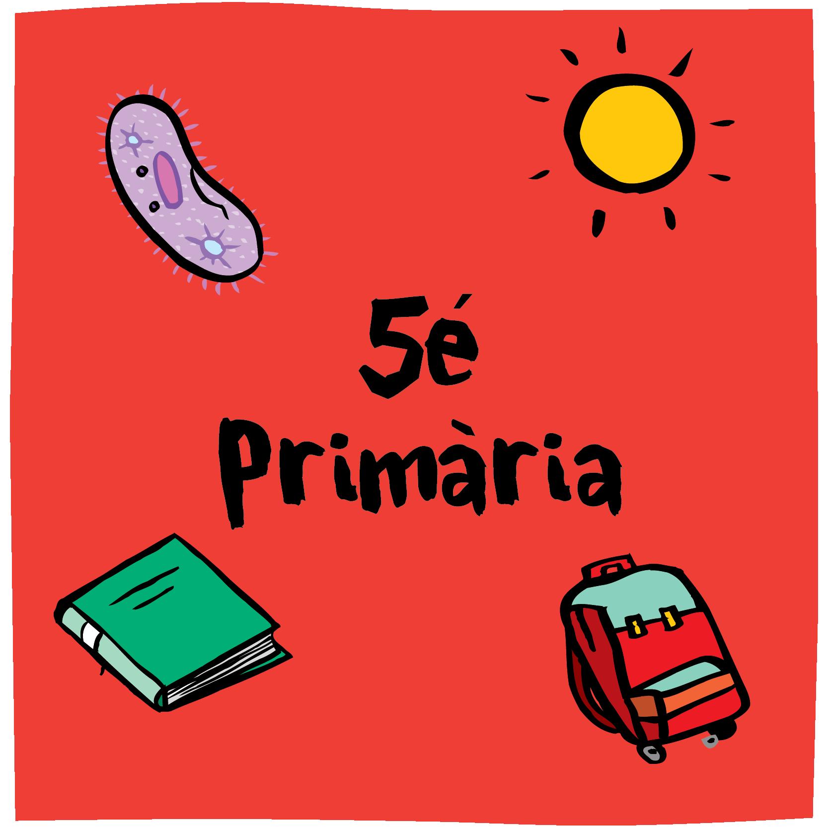 OBN 5é Primària